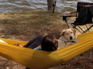 Piper discovered the joys of lounging in the hammock. He had climbed half- way in before I knew what he was doing and I couldn't resist helping him get settled.