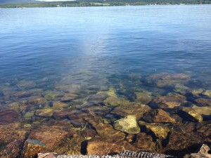 Lake Champlain water is so clear.
