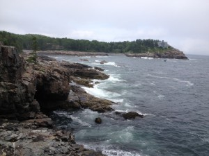The rocky shore of Acadia National Park.