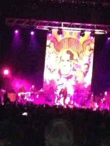 Robert Plant in concert.