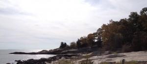 Rocky Neck State Park shoreline