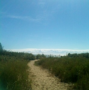 A trail to Hammonasset Beach