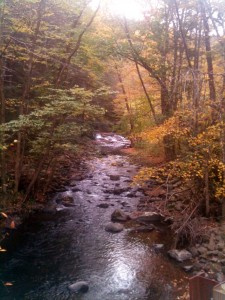 How is this for a beautiful view during our walk in The Poconos?