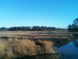 A marsh just outside of downtown Smithfield.