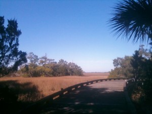 The marshes on Bald Head Island