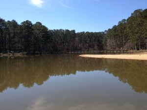 One of the coves at Lincoln State Park in Mississippi.
