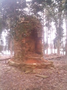 We spent a day at Dreher Island State Park, which is about 30 miles west of Columbia on Lake Murray. This giant fireplace is all that is left of the original Dreher Family estate, original owners of the 300+ acres before it was deeded to the State of South Carolina.