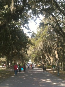 The multitude of parks in Savannah are certainly what gives the city so much of its personality. Forsyth Park is the largest of all the central community parks. I dropped Mike to the Army Air Base Golf Course and came here to wander around and people watch. It was lovely.