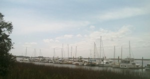 One of the two marinas on Jekyll Island. Mike and I discussed which ones would be livable over happy hour one afternoon. He is not as intrigued as I am about carrying our adventure over onto the water. Too much maintenance on a boat, he says.