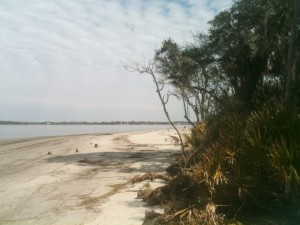 A portion of the beach in the state park section of Jekyll Island.