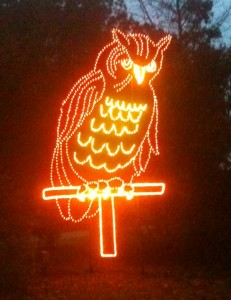 The mascot of the James Island County Park Campground is the owl. During Christmas, a world- class tour of lights is apparently showcased throughout the park. They said the owl stays illuminated all year round at the campground entrance.