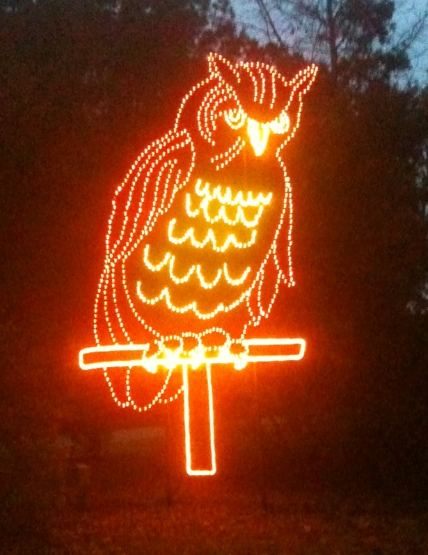 The mascot of the James Island County Park Campground is the owl. During Christmas,