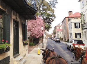 We joined the other tourists and took a carriage ride through the oldest parts of town.