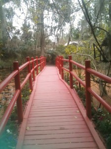One of the many quaint bridges among the ponds at Magnolia Gardens Plantation.