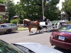 I'm not sure if these carriage rides are offered daily in Paducah, or if she only operates when special events are taking place in town.
