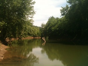 Our Still Waters Campground sat right on the banks of Elkhorn Creek where it empties into the Kentucky River.