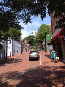 The dogs went with us to Annapolis. Cessna found the brick streets and historic buildings to be very quaint.