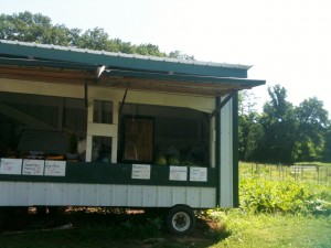 Almost every farm in Lancaster County had a little self service produce stand by the side of the road.