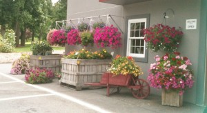 This was the view from the parking lot of an Amish Farmer's Market that I found on a little country back road. If I had an actual house with a patio or porch, you can bet most of those hanging baskets would have been purchased and transferred to the back of my Honda!