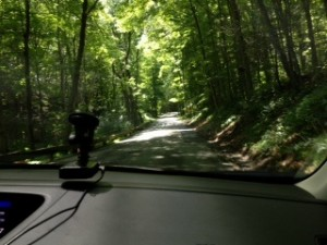 River Road runs along the Delaware River in The Delaware Water Gap National Recreation Area. So pretty.