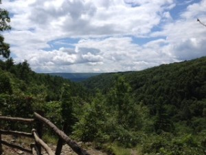 A view of the Delaware River Valley from our hike at Bushkill Falls.