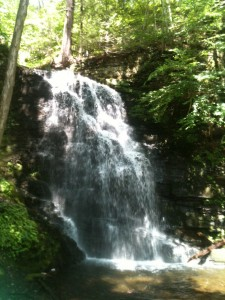 This is either Bride's Maids Falls, or Bridal Veil Falls. There were just so many to see that day!