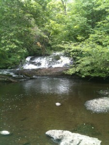 Buttermilk Falls was right down the road from our camp .