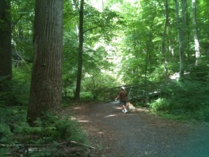 There wasn't too much to see in the form of restaurants or shopping in the Poconos, but we didn't mind. We spent most of our time on hikes through the wilderness. The Delaware Water Gap National Recreation Area is a beautiful national resource.