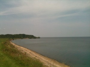 We took the dogs for a walk at Lakeside Beach State Park. It sits directly on Lake Ontario.