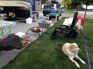Our spot at Holiday Shores Resort Campground. We were so excited for a concrete pad and thick grass. No mud!