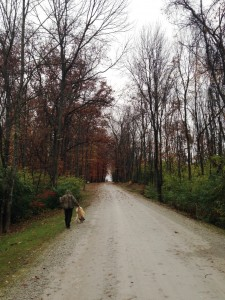 The road into our campground was a good place to walk the dogs every morning.