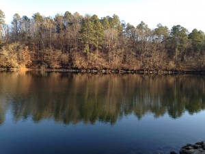 A typical view of calm morning lake water during our early walks.