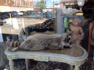 This was in the window of an antique store in the historic Westport neighborhood of Kansas City. Chuckle Chuckle.