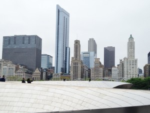 There is a pedestrian bridge that crosses Lake Front Drive at Millennium Park at the Lake Michigan's edge in downtown Chicago. I thought it looked like a giant metal snake slithering over the cars below.