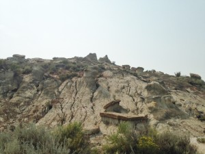 The rock formations in The Badlands had me thinking we might have been transported to another planet all together.