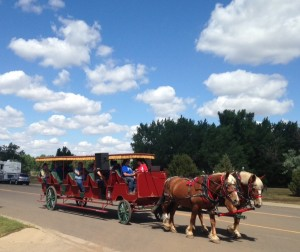 These horses provided tourists with a 30- minute tour of the town as the man with the reins serenaded them with old-timey cowboy songs.