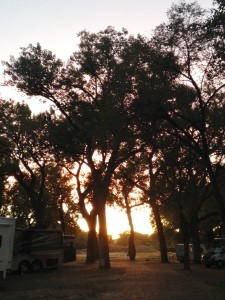 Sunset through the 100-year old Cottonwood trees in our campground.
