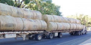 There is LOTS of hay in this part of the country. I guess they have to stock up for the winter months!