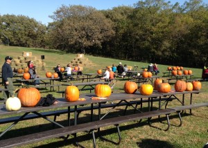 The Halloween festivities at the state park also included a pumpkin carving contest.