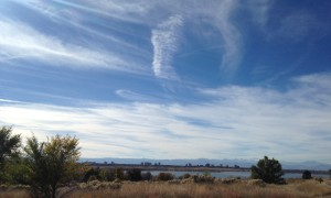A scene from one of our walks at Cherry Creek State Park.