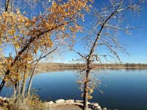 Part of the lake at Cherry Creek State Park.