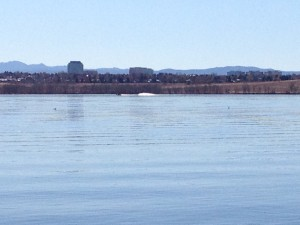 Water skiers on the Cherry Creek Reservoir. I wonder how cold the water was!