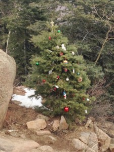 A surprise Christmas tree at the top of the incline made me smile in between inhaling big gulps of thin air.