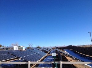 Solar panels are everywhere in New Mexico. These were next to the dog park at our campground.