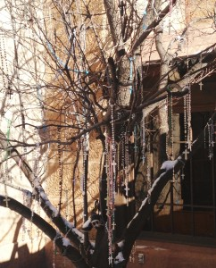 I loved this tree outside of Loretto Chapel, adorned with hundreds of rosaries.