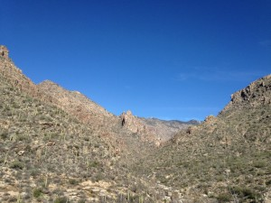 Sabino Canyon.