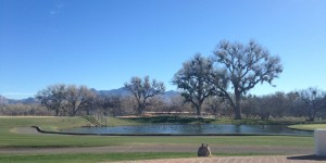Our view during breakfast on the patio on our last morning at Tubac Golf Resort.