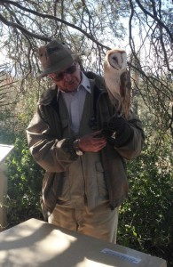 A volunteer with an owl at the Arizona Desert Museum.