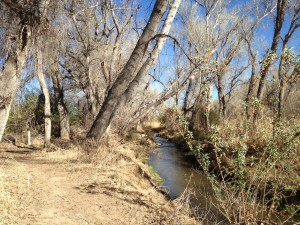 The Anza Trail follows the Santa Cruz River in Tubac. We could get on the path near the driving range at the golf course, and follow the markers for about a mile or so into town.
