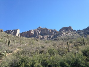 Sabino Canyon, looking up from where the tram dropped us off at the end of the road.